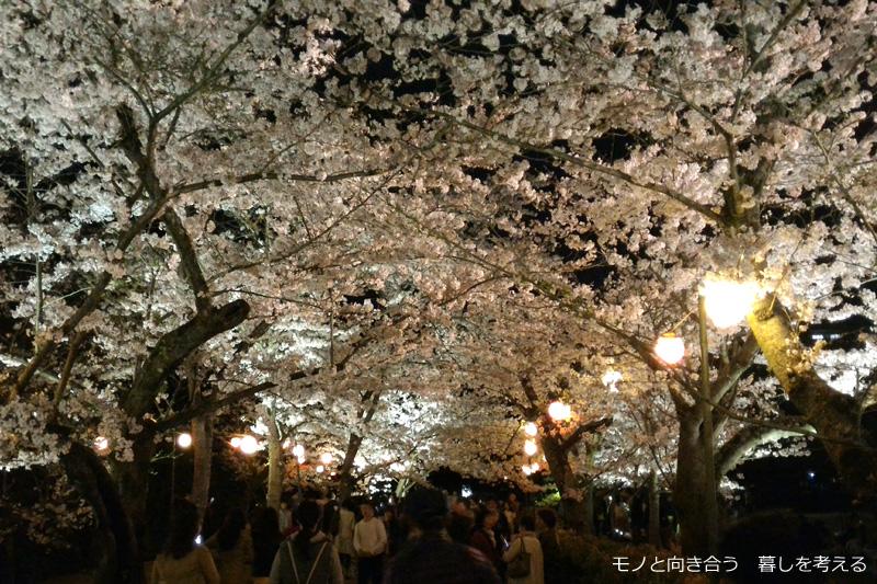 栗林公園夜桜ライトアップ2017年