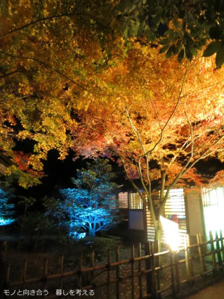 栗林公園、紅葉のライトアップ2016年