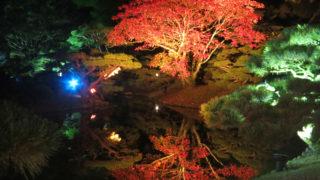 特別名勝・栗林公園の紅葉ライトアップは風のない日に訪れたい|高松市