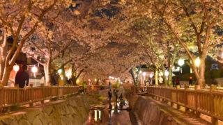 幻想世界~鹿の井出水(しかのいですい)の夜桜|高松市