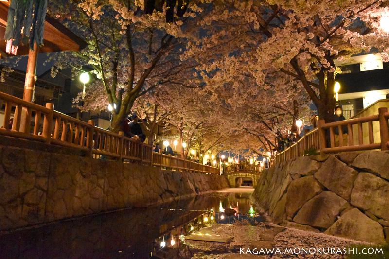 鹿の井出水(しかのいですい)の夜桜